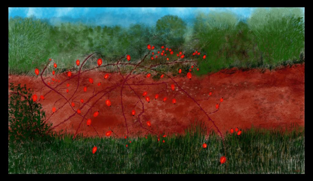 Première image de 'Cynorhodon'. Impression d'art éblouissante inspirée des belles couleurs des fleurs de Cynorhodon d'Occitanie, France. artiste : Anne Turlais - Edition limitée à 300 exemplaires. Art floral abstrait imprimée sur papier fine art et encollé sur Dibond