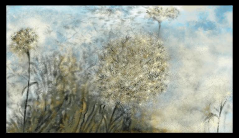 Première image des 'Astéracée' - Les dernières feuilles tremblantes de l'automne s'accrochent au sommet des peupliers, formant une jolie enveloppe plumeuse. artiste : Anne Turlais - Edition limitée à 300 exemplaires. Impression d'art floral sur papier fine art et encollée sur Dibond.