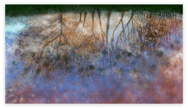 First image of 'Puddle'. Dazzling art print inspired by the fascinating world one can observe in a puddle, opening to the sky. artist: Anne Turlais - Limited edition of 300. Printed on Dibond.