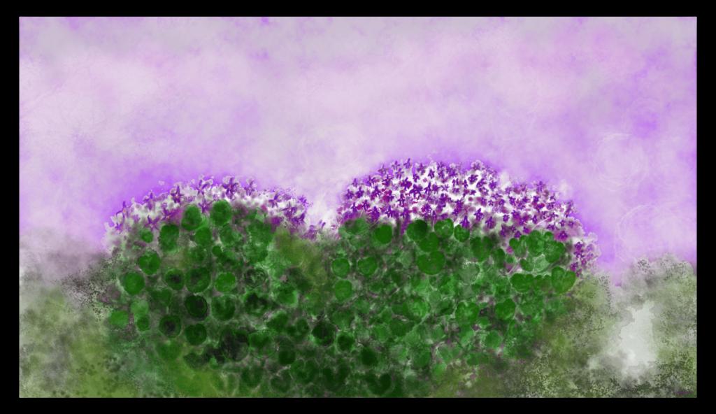 Première image de 'Violettes' - Superbe tirage d'art inspiré par les violettes de la nature d'Occitanie, en France. artiste : Anne Turlais - Edition limitée à 300 exemplaires. Art contemporain abstrait imprimé sur papier fine art et encollé sur Dibond.