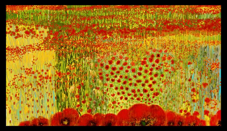Impression d'art éblouissante inspirée des vives couleurs des coquelicots d'Occitanie. artiste : Anne Turlais - Edition limitée à 300 exemplaires. Impression d'Art Florale en édition limitée sur Dibond.